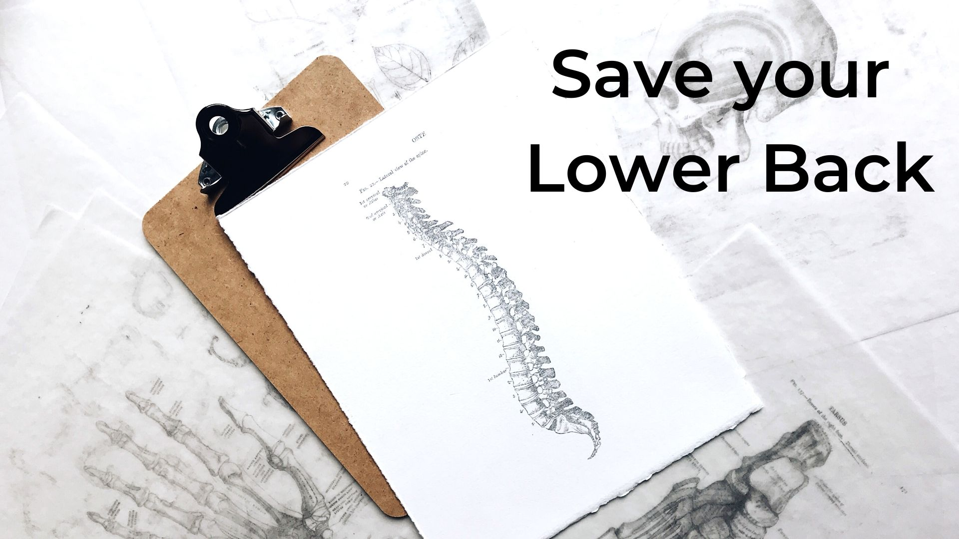 Prevent Low Back Pain: What I wish I knew in the 80's!